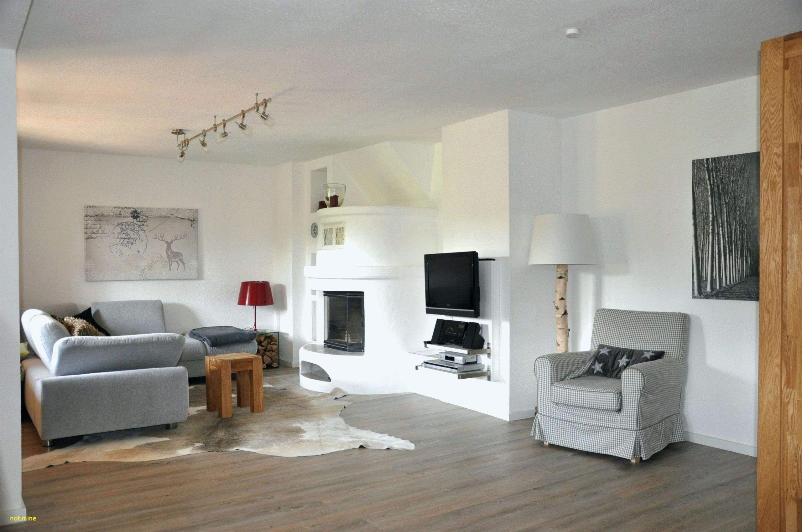 dekorationsideen genial baum wohnzimmer luxus deko ideen