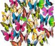 Dekostecker Garten Elegant Hakacc Schmetterling Einsatz 50 Stück 9 Cm Garten Schmetterling ornaments Wasserdicht Deko Schmetterling Für Innenbereich Außenbereich Garten