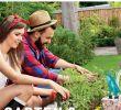 Dekostecker Garten Inspirierend Baywa Kw16 by Russmedia Digital Gmbh issuu