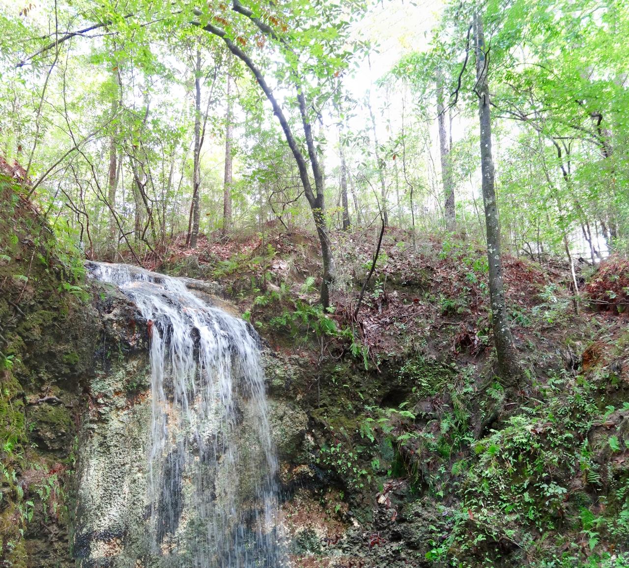 wasserfall Falling waters state park nordflorida wasserfall florida natinalpark