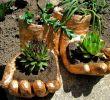 Diy Deko Garten Frisch How to Make Hand From Concrete Pot In the form Of Hands