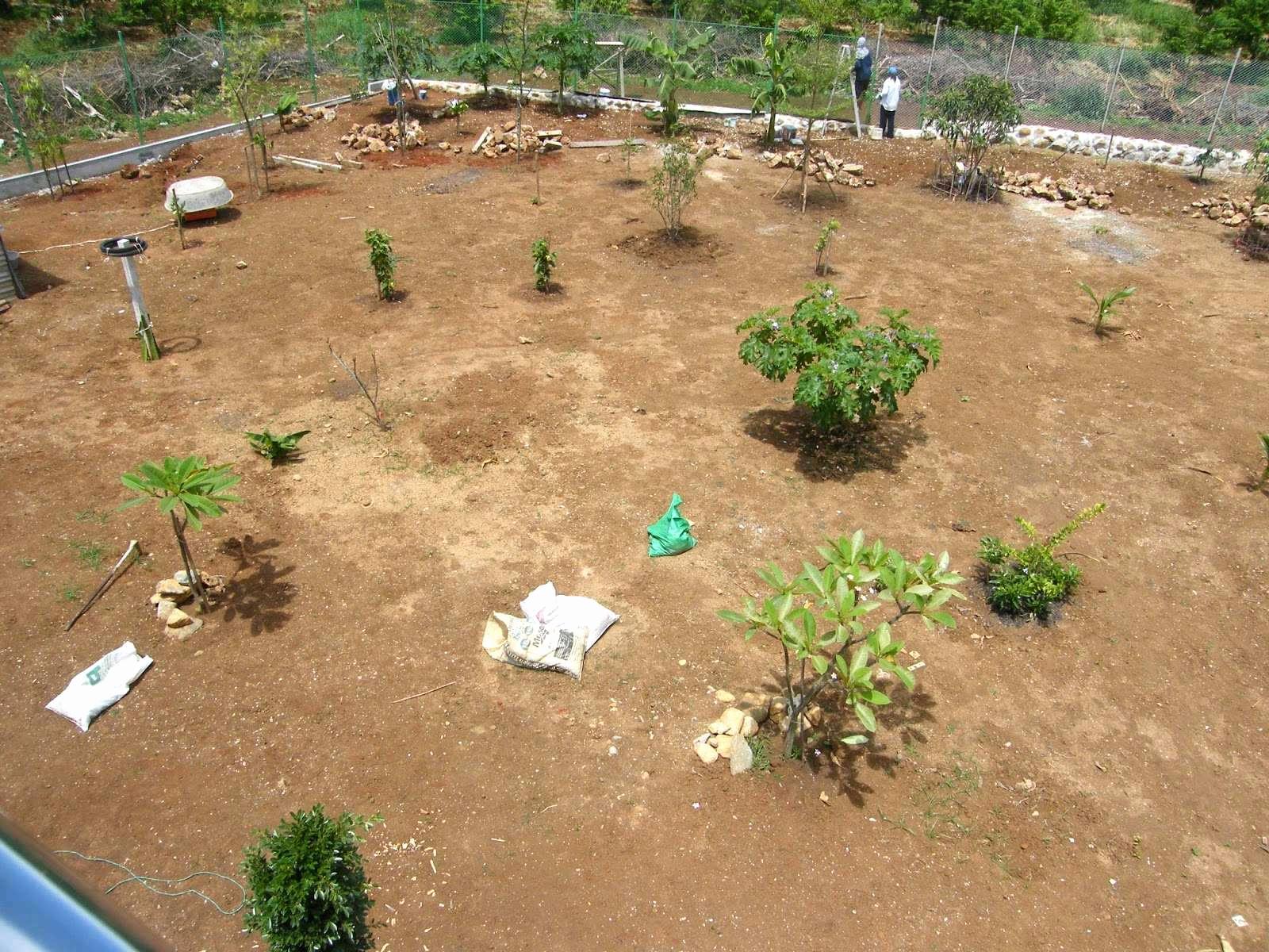 mini herb garden photo of 45 einzigartig botanischer garten aachen pic of mini herb garden