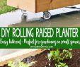 Diy Gartendeko Einzigartig Diy Rolling Planter Box is A Simple & Easy Home Project