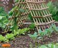 Diy Gartendeko Luxus Diy Für Den Garten Aus Gittern Ruten Und Gartengeräten