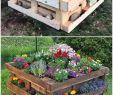 Diy Ideen Garten Schön Easy and Simple Diy Wood Pallet Crafting Ideas