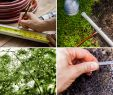 Do It Yourself Garten Einzigartig How to Set Up An Inexpensive Diy Garden Irrigation System