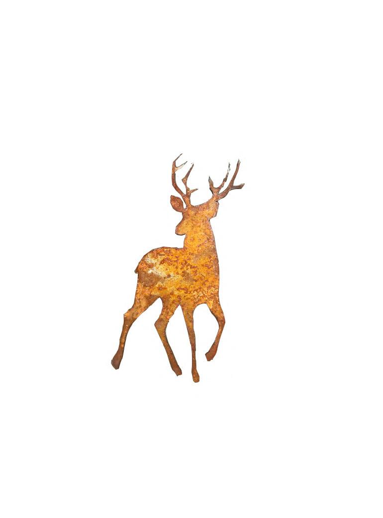 maly jelen rdzawy