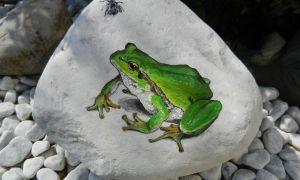 32 Neu Frosch Deko Garten
