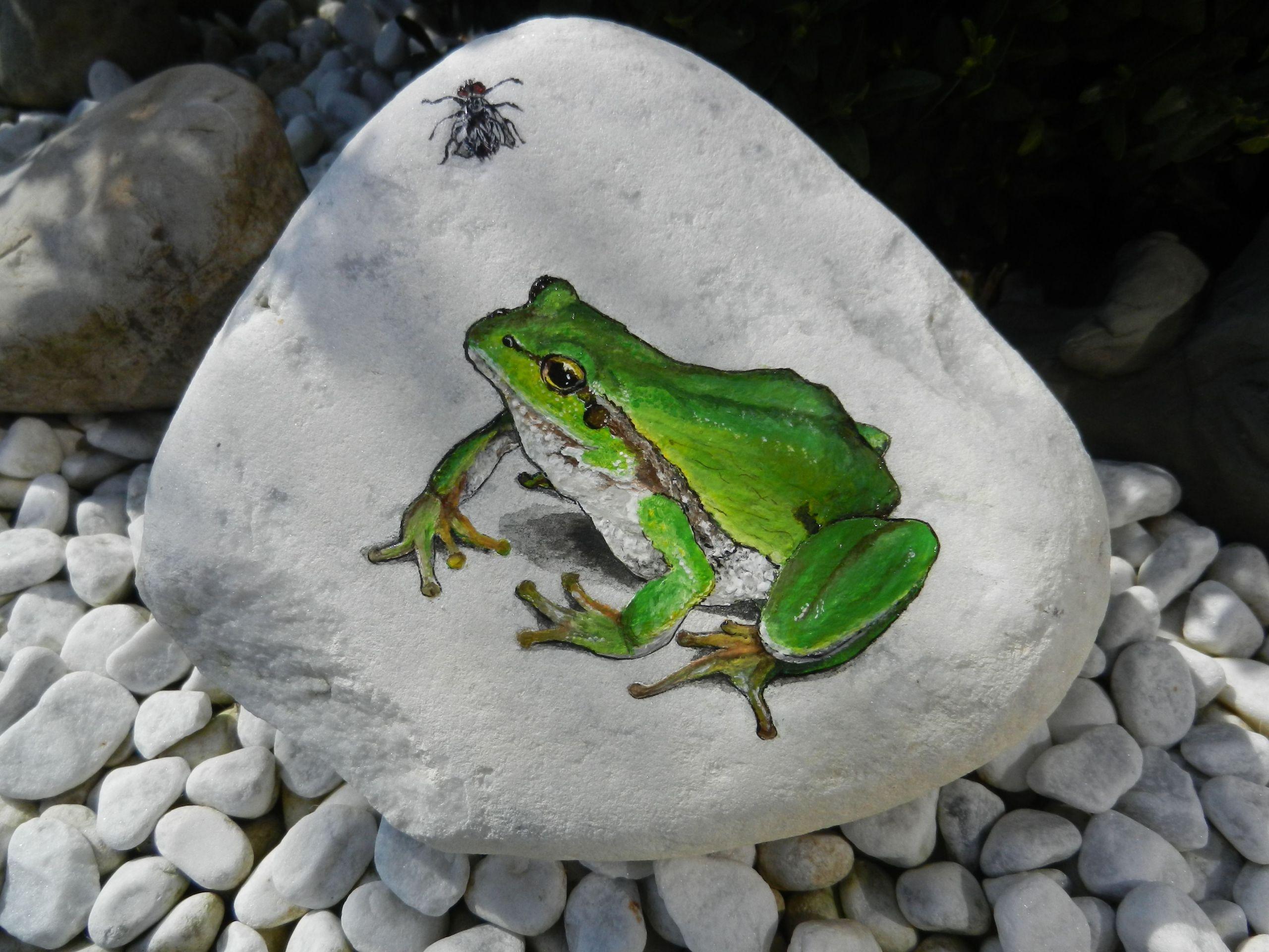 Frosch Deko Garten Einzigartig Frosch Mit Fliege Auf Stein Etwas Anspruchsvoller Für Den