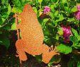 Frosch Deko Garten Neu Guten Morgen🙋♀️💕 Schaut Mal Wen Ich Im Garten Gefunden