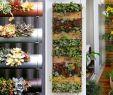 Frühlingsdeko Für Den Garten Frisch Diy Ideen Vertikaler Garten Für Den Balkon Bilder
