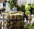 Frühlingsdeko Für Den Garten Schön Interessante Dekoration Für Den Garten Nesttisch Selber