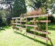 Günstige Gartendeko Neu Natürlicher Gartenteiler Den Man Auch Für Den