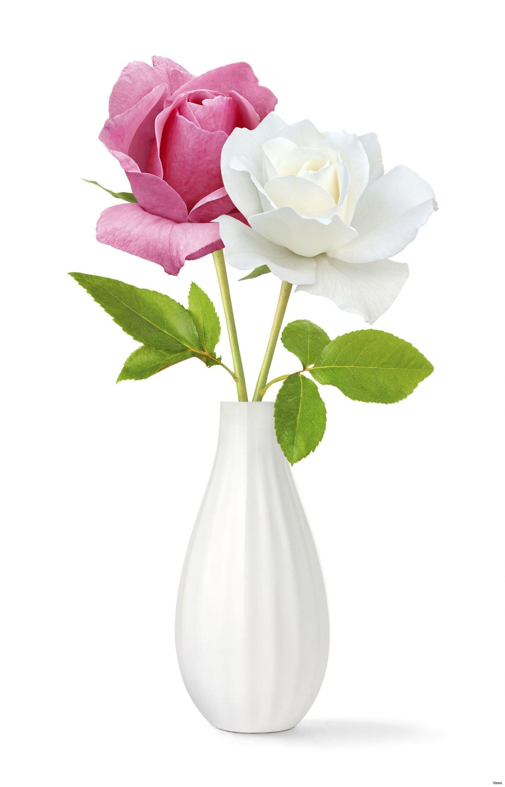 flower vase garden of light pink vase elegant roses red in a vase singleh vases rose within light pink vase elegant roses red in a vase singleh vases rose single i 0d scheme