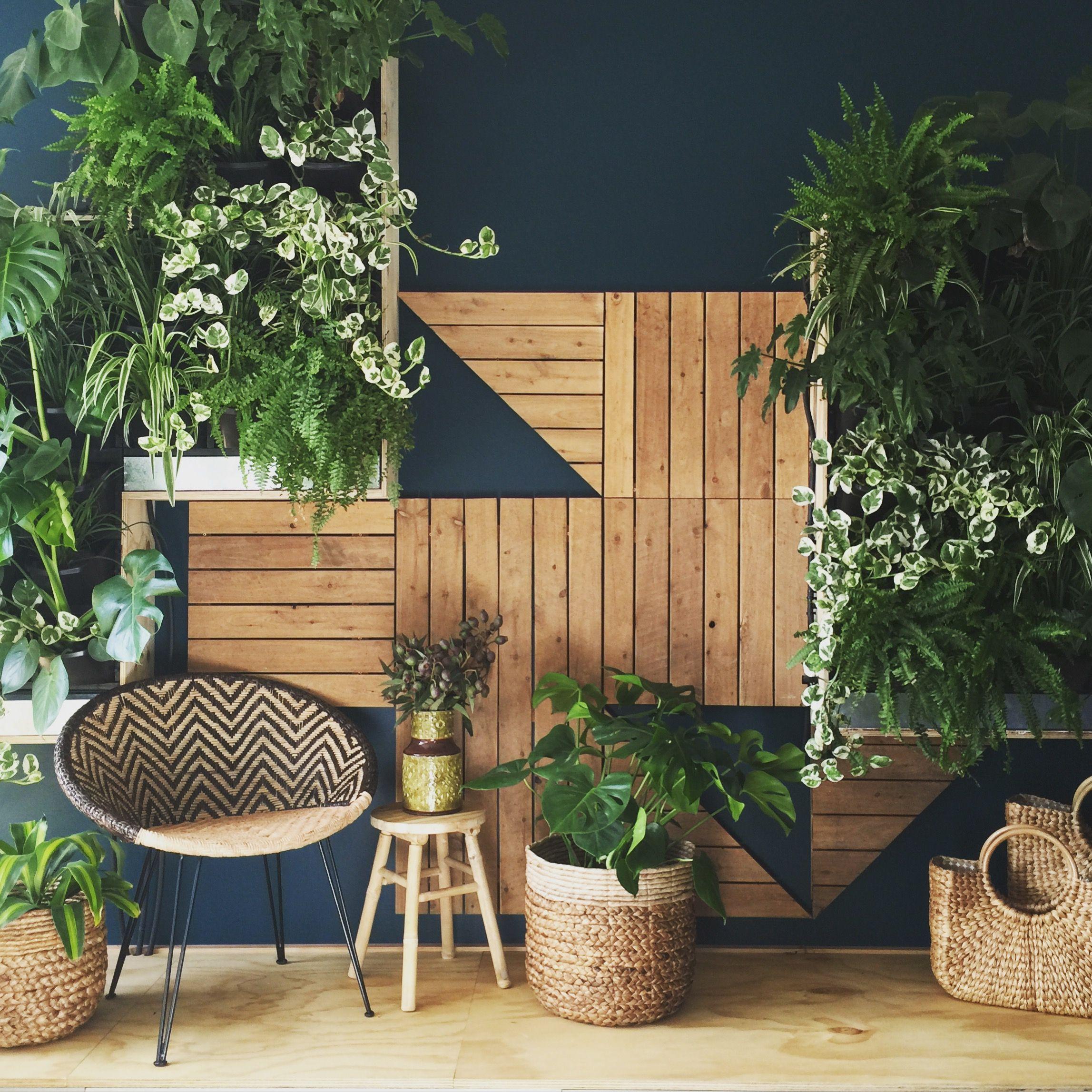 Garten Ambiente Luxus Our Stunning Phillip withers Vertical Garden is A Show