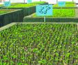 Garten Ambiente Neu File Greenhouses In Qom 17 Wikimedia Mons