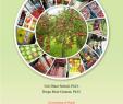 "Garten Ambiente Neu Pdf Postharvest Management Of Apple In Nepal ""reduce"