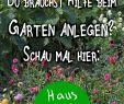 Garten Anlegen Lassen Best Of Die 746 Besten Bilder Von Garten
