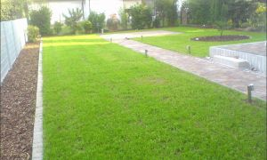 28 Neu Garten Anlegen Lassen