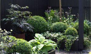 26 Inspirierend Garten Bedarf