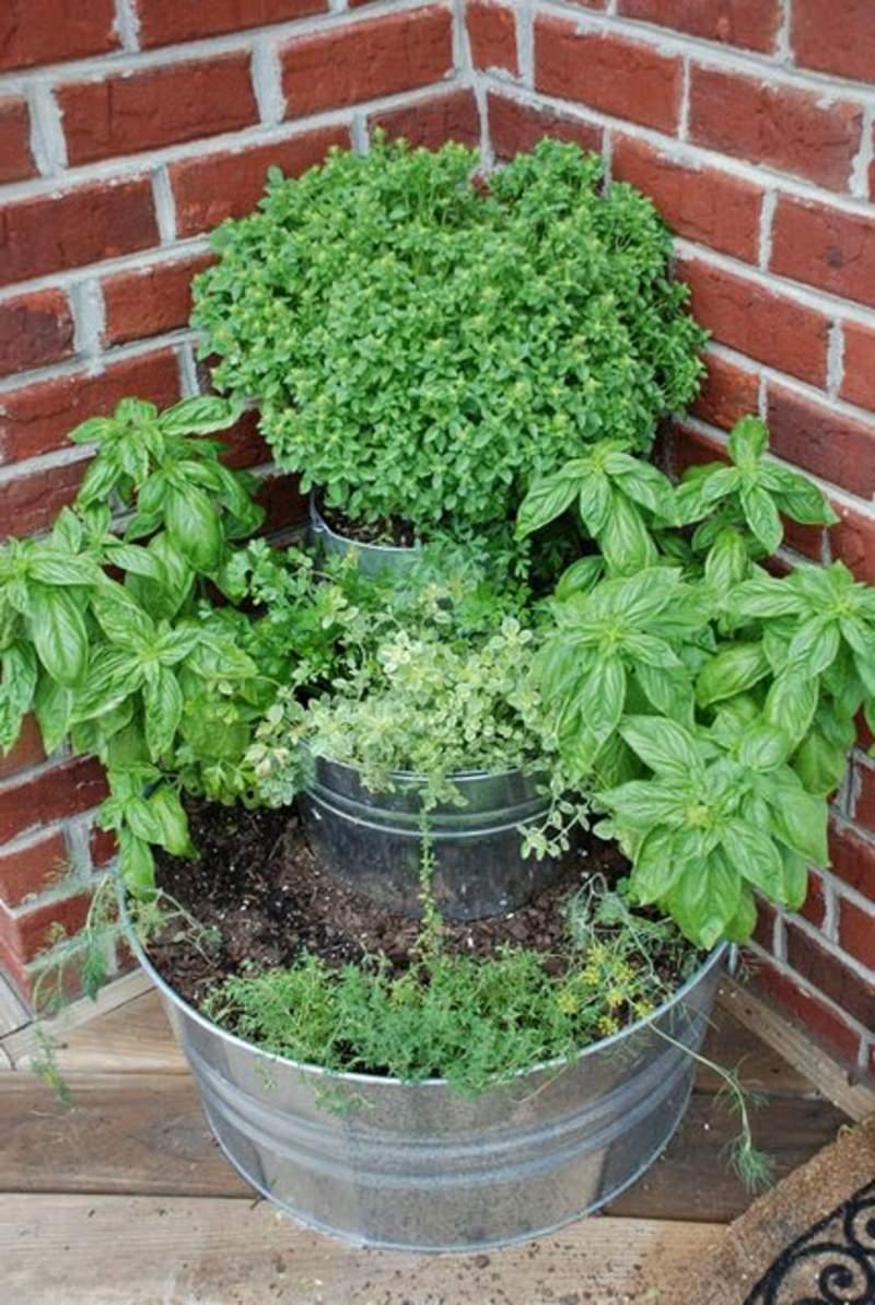 garten busche frisch sadzenie balkonu 60 oryginalnych pomysac282c2b3w of garten busche