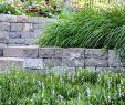 Garten Bepflanzung Schön Sandkasten Garten Inspirierend Natursteinmauern Und Eine