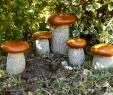Garten Deco Best Of Pilz Aus Naturstein Steinpilz Granit Garten Deco Garten