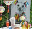 Garten Dekoartikel Schön sommerliche Dekoration Mit Alpakas Bunten Lampions