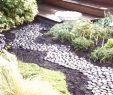 Garten Dekosteine Schön 39 Luxus Pflegeleichter Garten Bilder Inspirierend