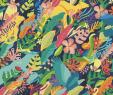 Garten Design Ideen Inspirierend Avaaz Alvarado Letters for Life Earth