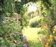Garten Gestalten Ideen Einzigartig Garten Mit Blumen Gestalten Garten Gestalten Mit Wenig Geld