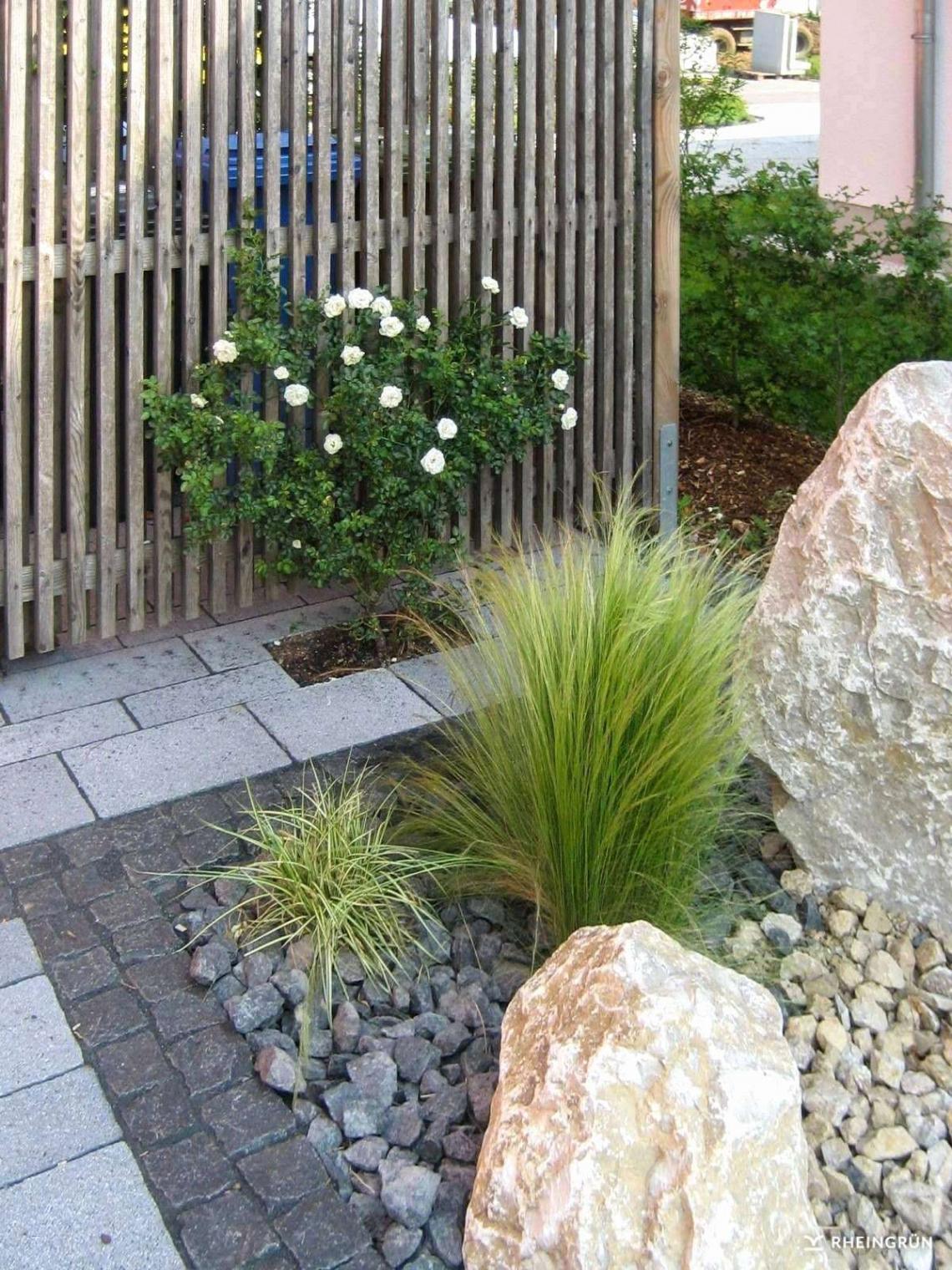 42 schon sichtschutz terrasse pflanzen stock pflanzen garten sichtschutz pflanzen garten sichtschutz