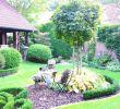 Garten Ideen Bilder Best Of Gartengestaltung Ideen Bilder — Temobardz Home Blog