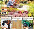 Garten Katalog Neu Obi Katalog Baucentra Od 07 20 09 2018 by Catalog issuu