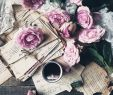"Garten Katalog Schön 🎀 Jasmina 🎀 On Instagram ""un Petit Bouquet De Rose Pour"