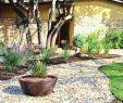 Garten Mit Steinen Gestalten Best Of Gartengestaltung Mit Findlingen — Temobardz Home Blog
