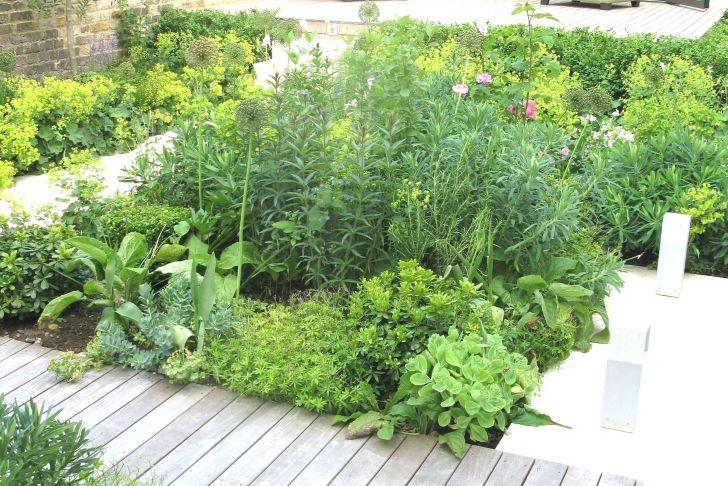 Garten Naturnah Gestalten Frisch Naturnaher Garten Anlegen Fingerhut Pflanze 0d Schema Von