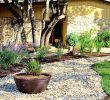 Garten Naturnah Gestalten Neu Garten Anlegen Beispiele