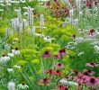 Garten Naturnah Gestalten Schön Pin Von Germán Arriagada Sandoval Auf Posici³n De