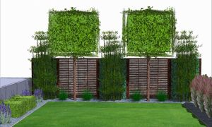 39 Inspirierend Garten Pflanzen