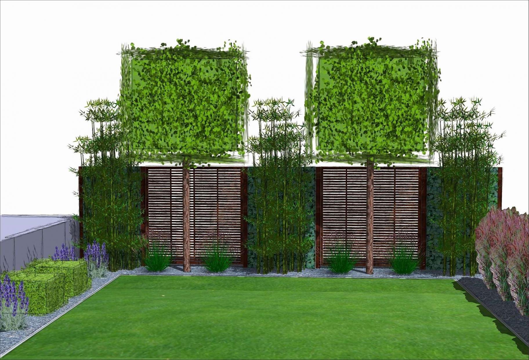 Garten Pflanzen Schön Garten Pflanzen Sichtschutz Genial Garten Pflanzen