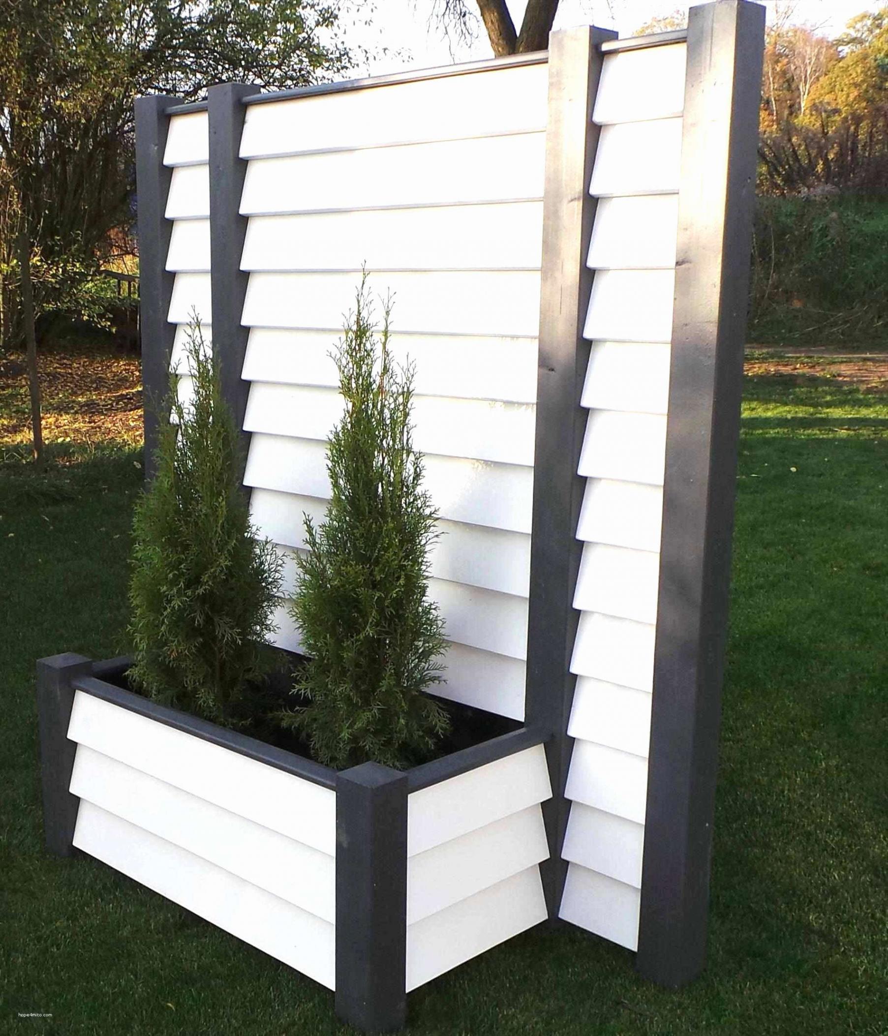 30 einzigartig terrassengestaltung sichtschutz pflanzen garten pflanzen sichtschutz garten pflanzen sichtschutz