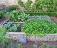 Garten Schön Gestalten Schön Potager Garden Raised Garden Beds