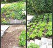 Garten Selbst Gestalten Ideen Schön 62 Genial Blumen Ideen Garten