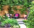 Garten Sichtschutz Holz Schöner Wohnen Elegant Tapeten Schöner Wohnen Neu 80 Schoner Sichtschutz Ideas