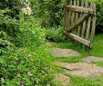 Garten Verschönern Best Of Der Gartenweg 50 Gartenwege Welche Sie Durch Den