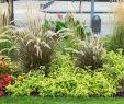 Garten Verschönern Genial Ideen Für Eine Einladende Frühlingsstimmung Im Garten