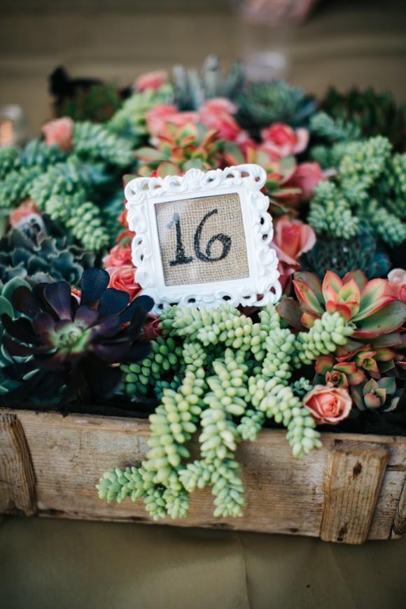 Garten Verschönern Luxus Herrlich Saftigen Planters sofort Verschönern Ihres