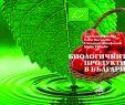 """Garten Vorschläge Luxus Consulta Typefacets """"book"""" Registros Recuperados 1 758"""