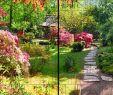 Gartenanlage Gestalten Best Of Natur Panorama Xl Bedruckte Sichtschutzstreifen Für Doppelstabmattenzaun